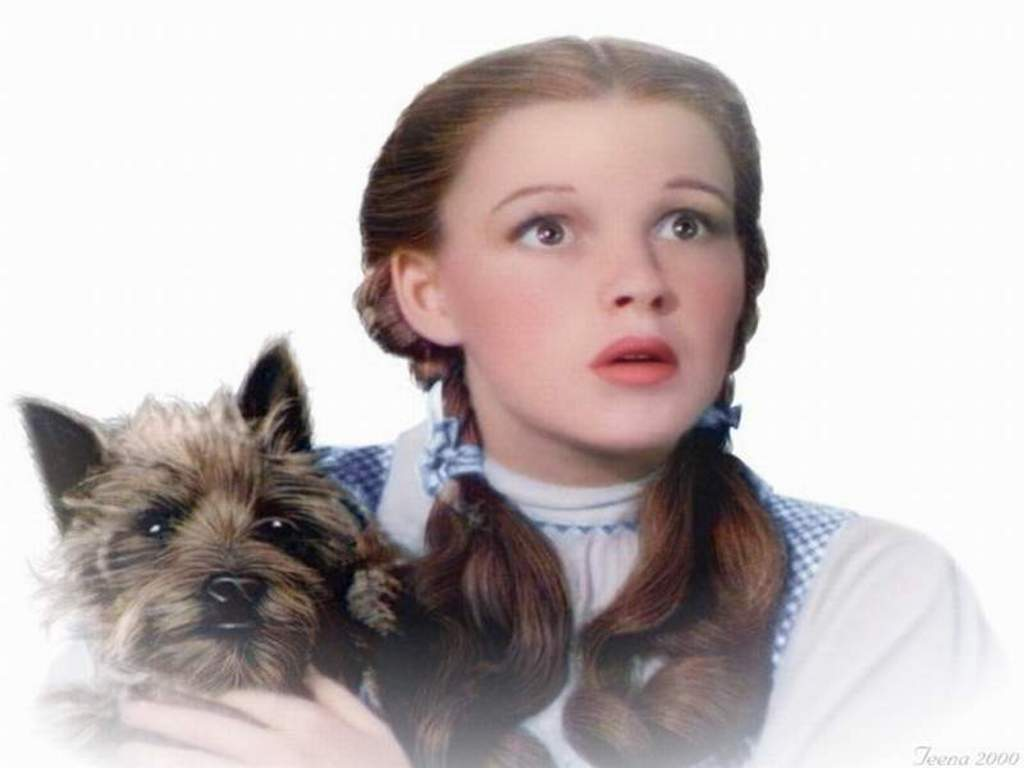 Dorothy_and_Toto.jpg